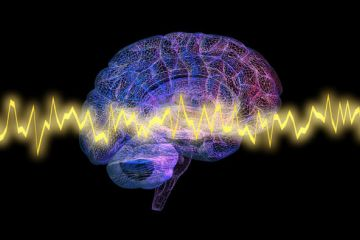 Neuroplasticity in the treatment of Depression and Anxiety